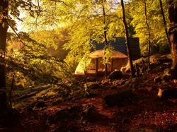 coucher de soleil sur la cabane, le brame du cerf rettentit au fond des bois